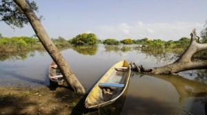 Hampa y escasez de combustible sentencian a muerte producción de pesca artesanal en La Ceiba